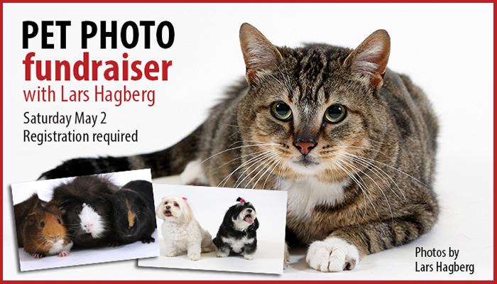 Pet photo fundraiser