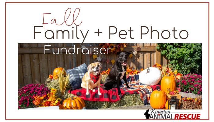 Family + Pets Fall Photo Fundraiser